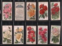 Tobacco cigarette cards Roses 1913 set of 50